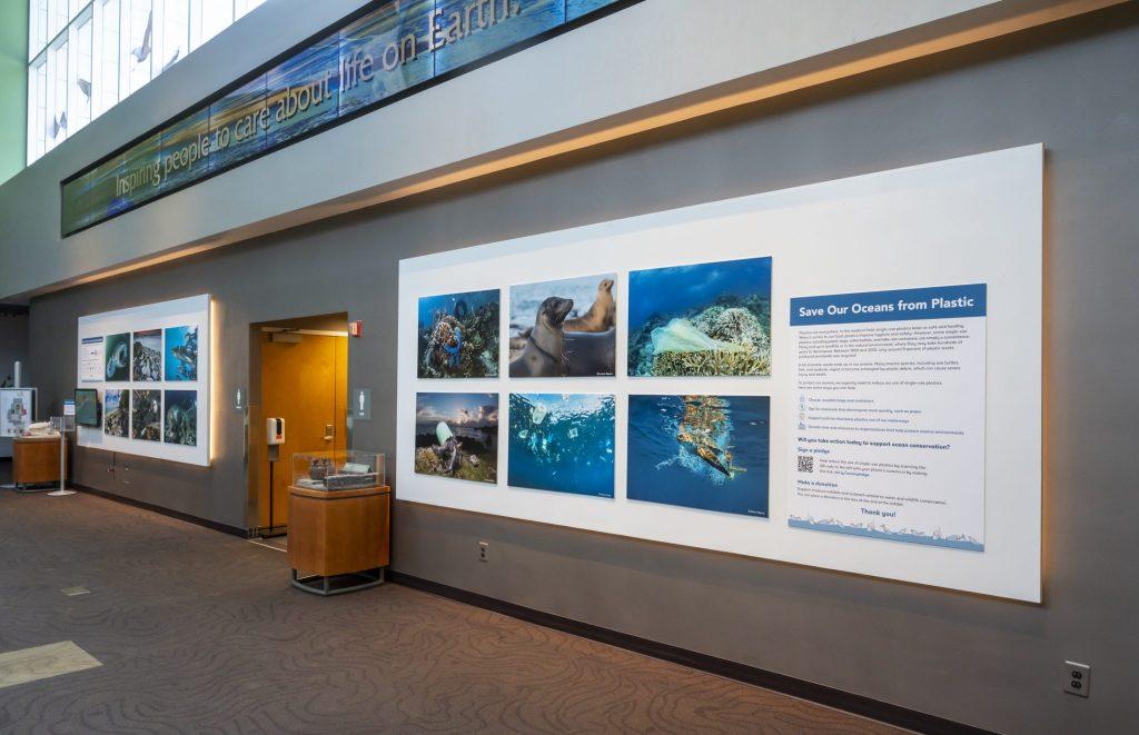 exhibit panels on wall