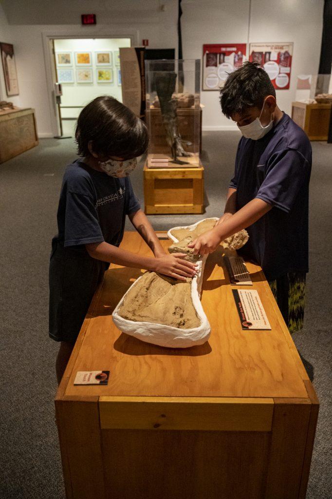 children touching interactive dinosaur bone
