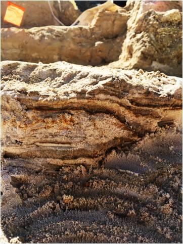 Sedimentary deposits.
