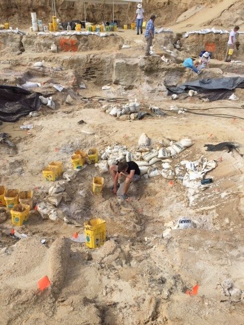The site after the washed in soil and clay was removed. Florida Museum photo by Lisa Jefferson