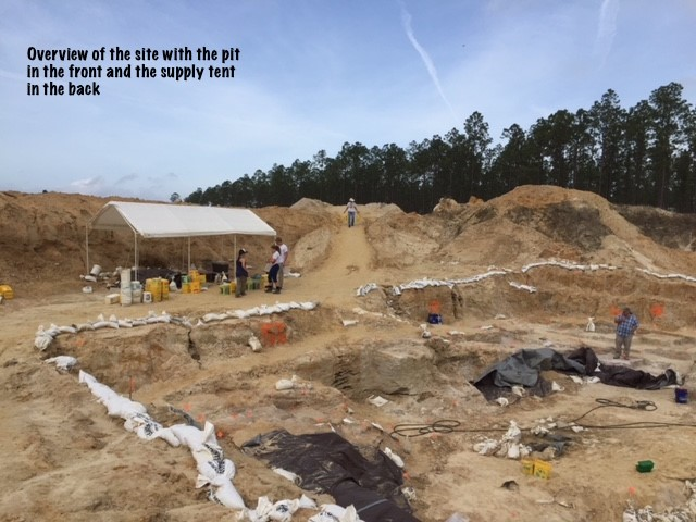 Overview of the site with the pit in the front and the supply tent in the back.