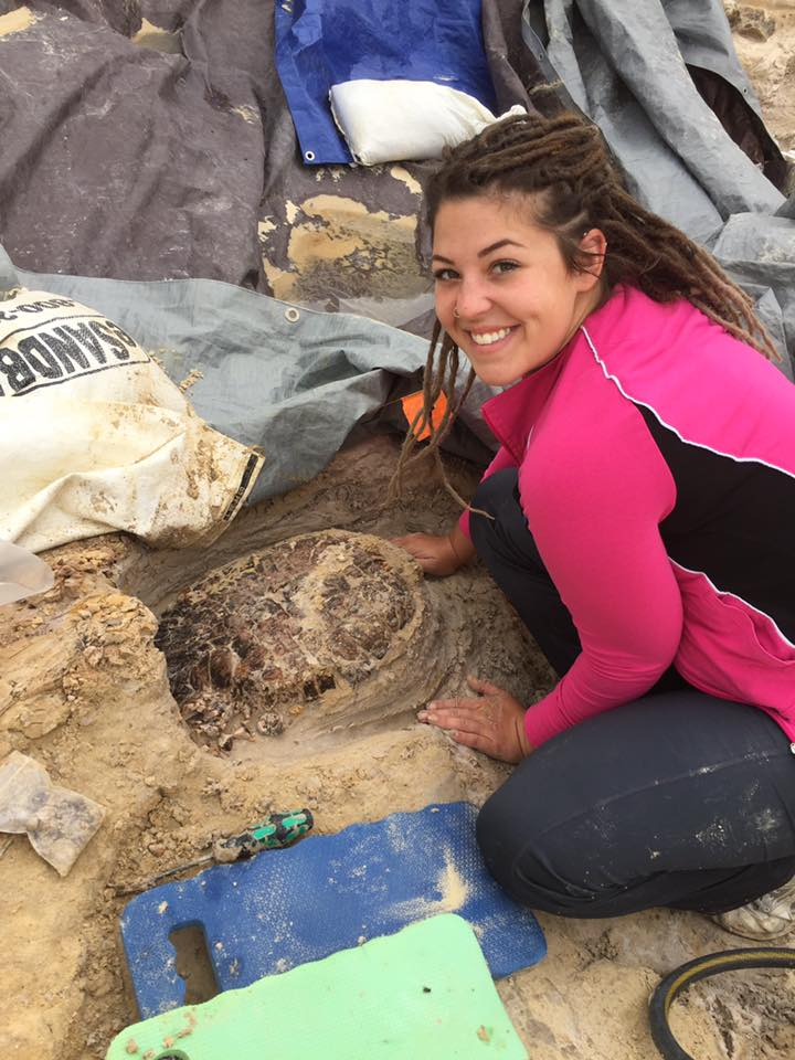 Fl VP Student, Paige Bugryn, excavating around the large Trachemys turtle shell.