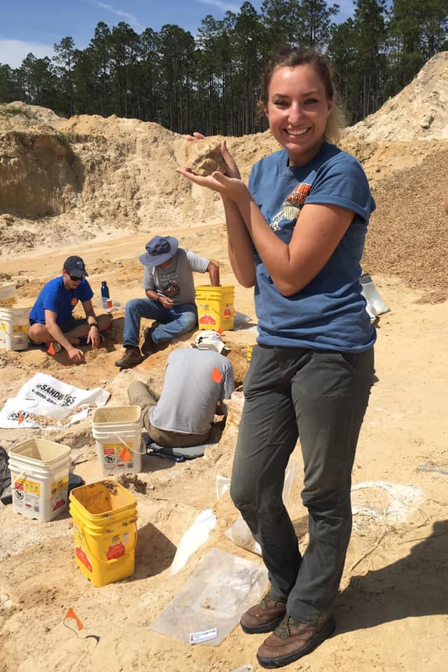 2019-03-11 Rebecca Cook with gomphothere fossil. Florida Museum photo by Cindy Lockner.
