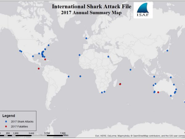 2017 worldwide shark attack map