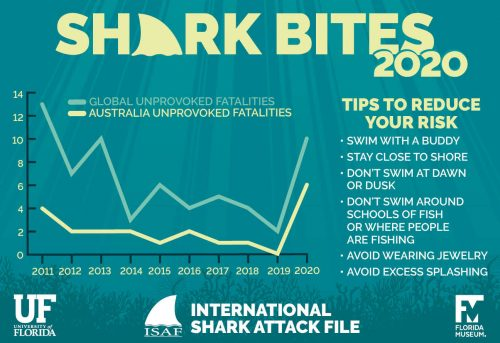 shark bite fatal time graph