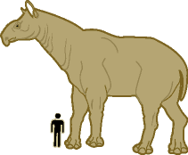 diagram of person standing next to Indricotherium for comparison