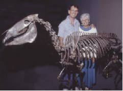 Steve and Sue Hutchins stand next to mounted skeleton