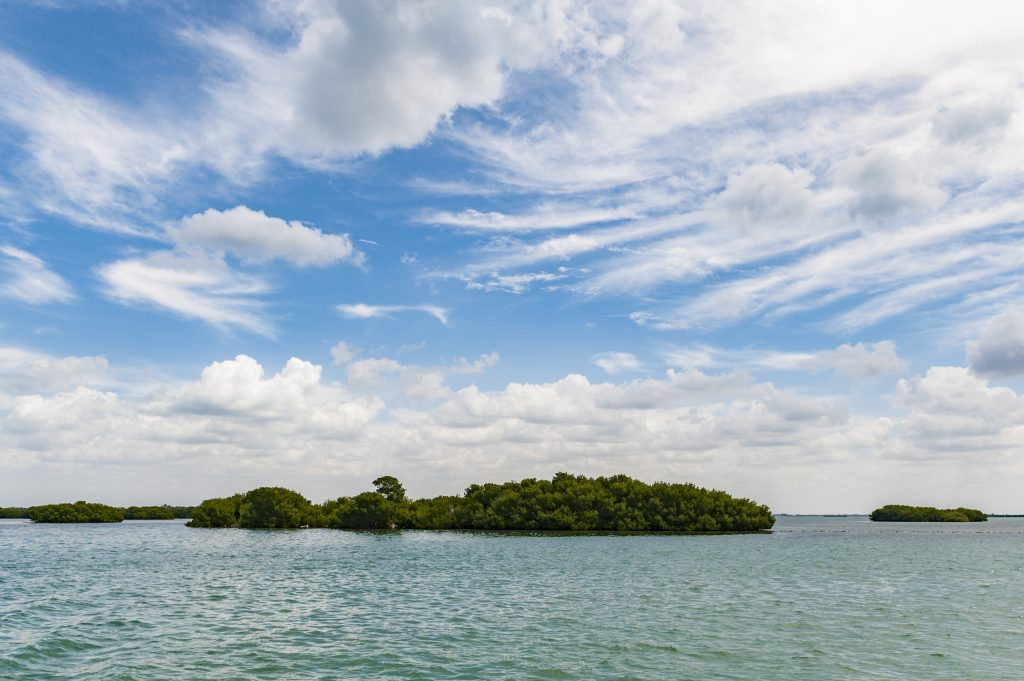 offshore mangrove islands with pretty clouds