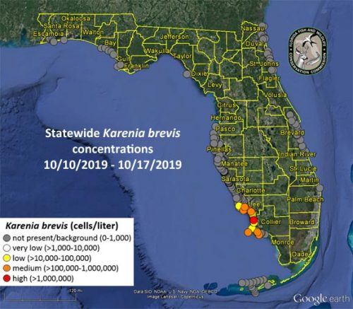 red tide current status map 10/18