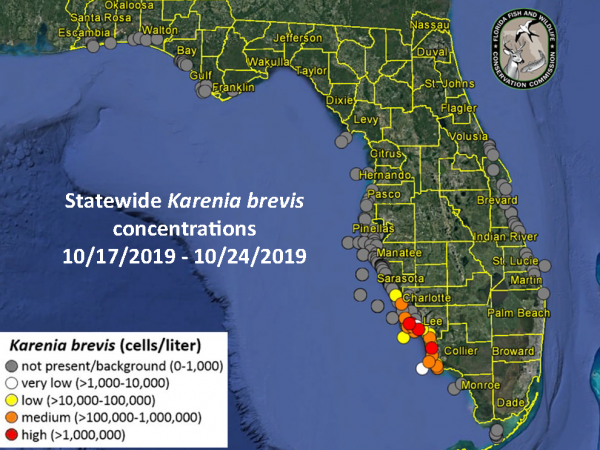 a map by the Florida fish and wildlife conservation commission showing concentrations of red tide in southwest florida