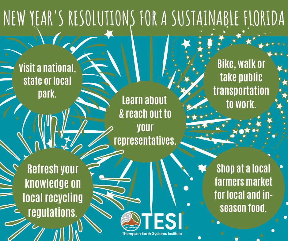 new year's resolutions for a sustainable florida