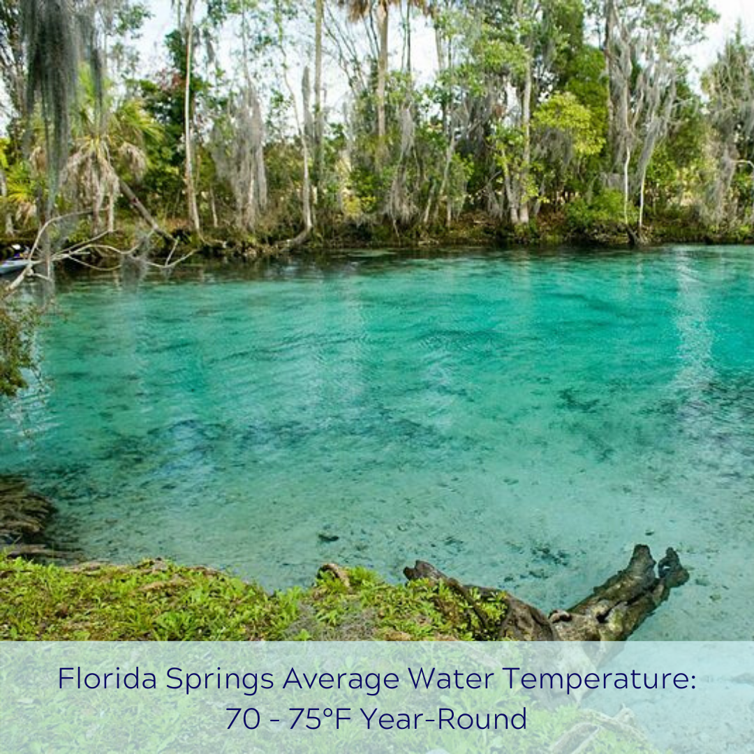 A graphic of Florida Springs Water Temperature