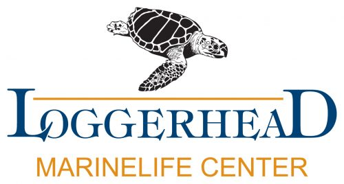 Loggerhead Marine Life Center logo
