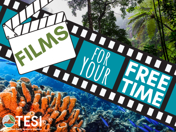 header for films for your free time