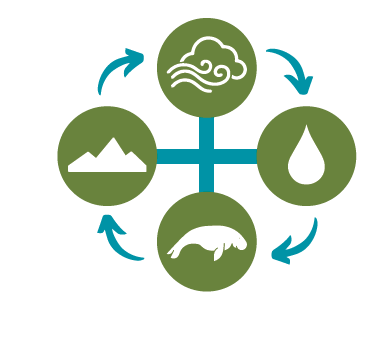 air, water, land and life connection graphic