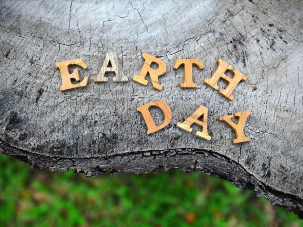 Earth Day written on a Stump