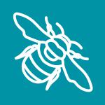 bumblebee graphic