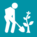 person planting tree graphic