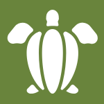 sea turtle graphic