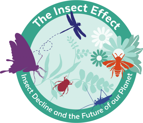 insect effect campaign logo