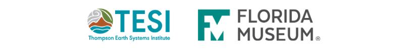 tesi and fm logo