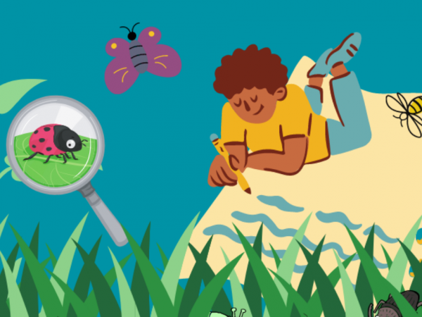 insect effect k-12 resources illustration