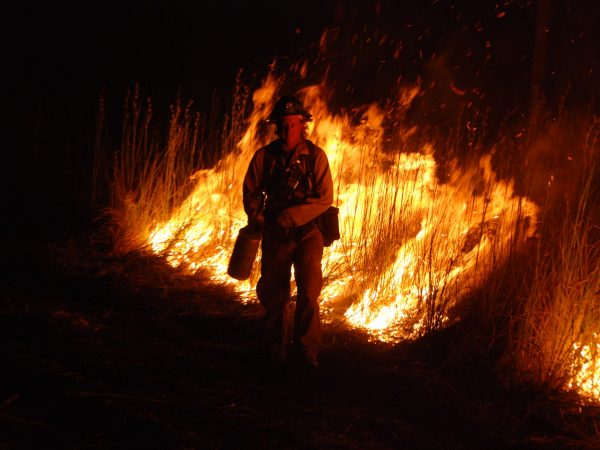 """""""The face of prescribed fire"""""""