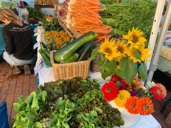 organic farms in florida