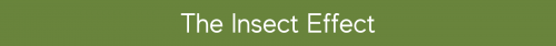 The Insect Effect Banner