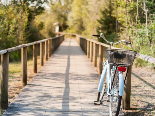 bicycle on boardwalk