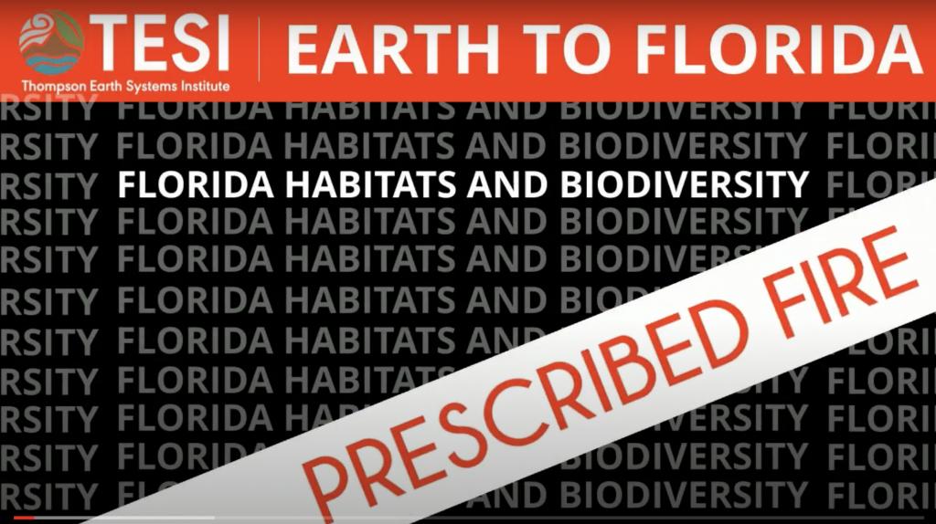 Prescribed Fire - Earth to Florida