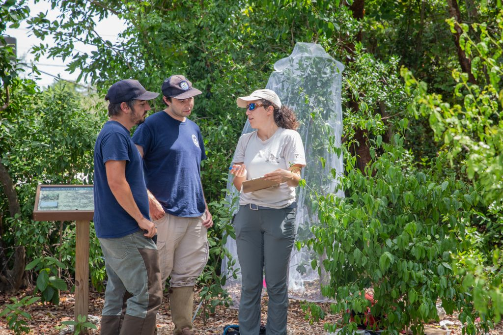 Sarah Steele Cabrera discussing monitoring plans with Refuge staff. Photo: Geena M. Hill