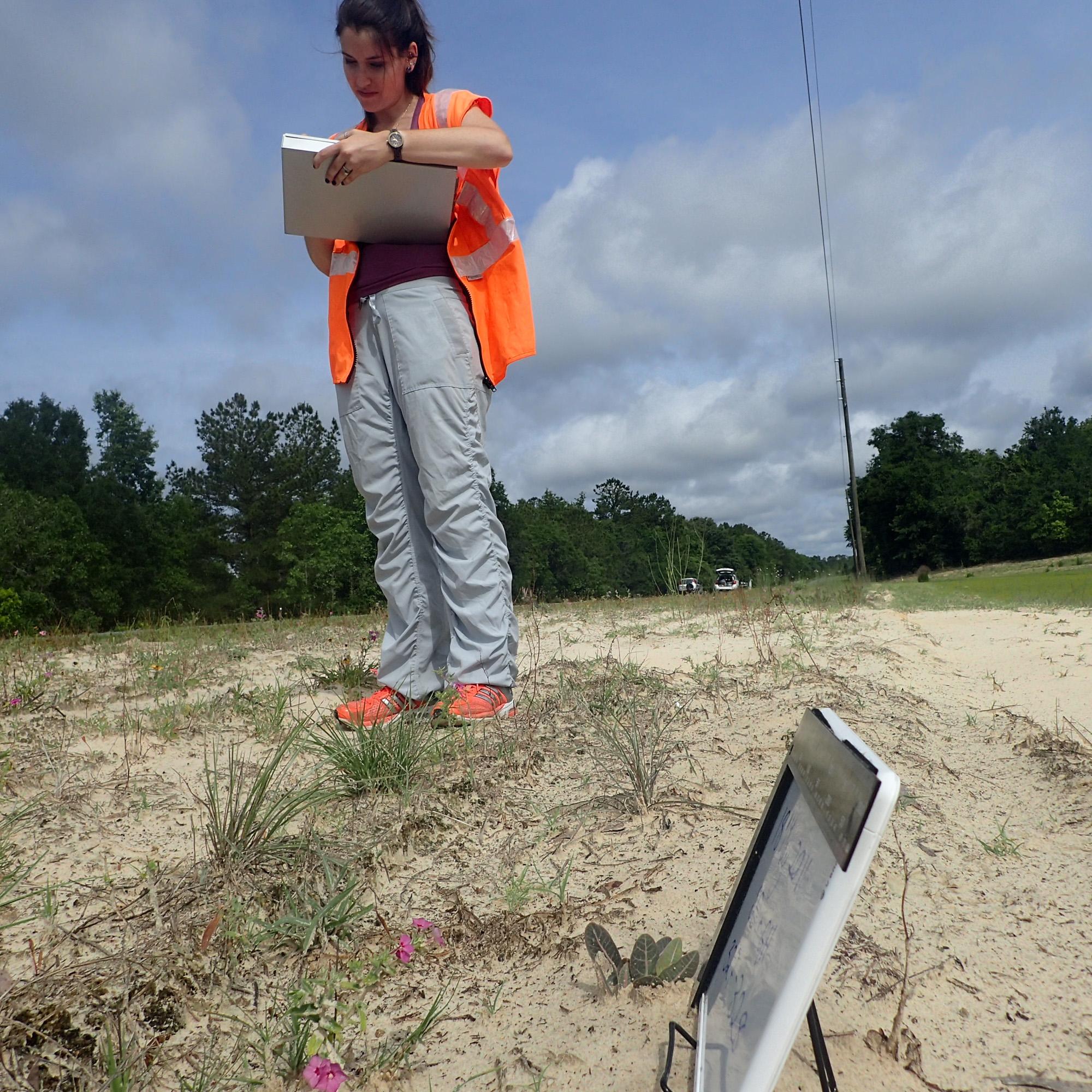 Samm Epstein records the location of milkweed plants along a Florida State highway.