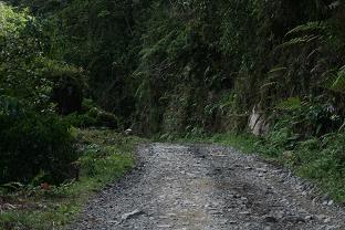 Manu road at San Pedro 1500m.