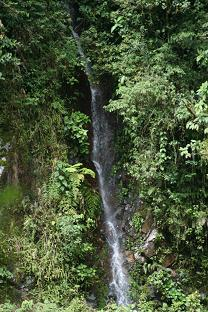 Water Fall nest to the road, San Pedro, 1500m