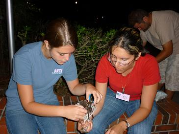 Mockingbird Field Crew 2009