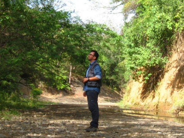 Daniel conducting census