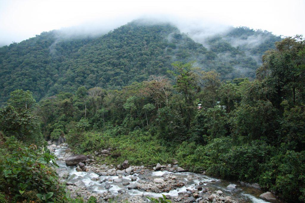 San Pedro in the Manu, Peru.
