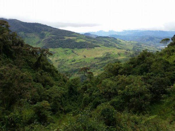 Cordillera Colan